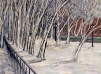 Snow Scene at Park Theodor Roosevelt Park, NYC