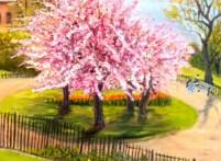 Blossom in Theodor Roosevelt Park